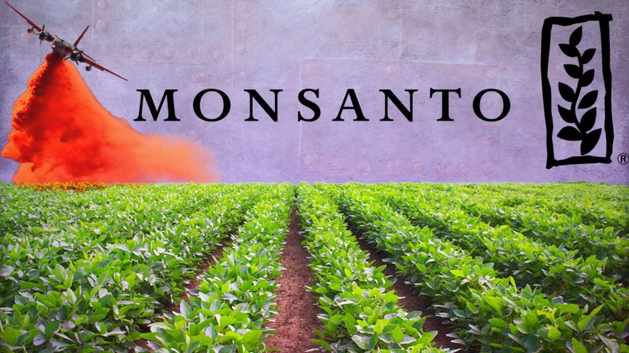 Monsanto Wins Royalties Dispute Case with Indian Outfit