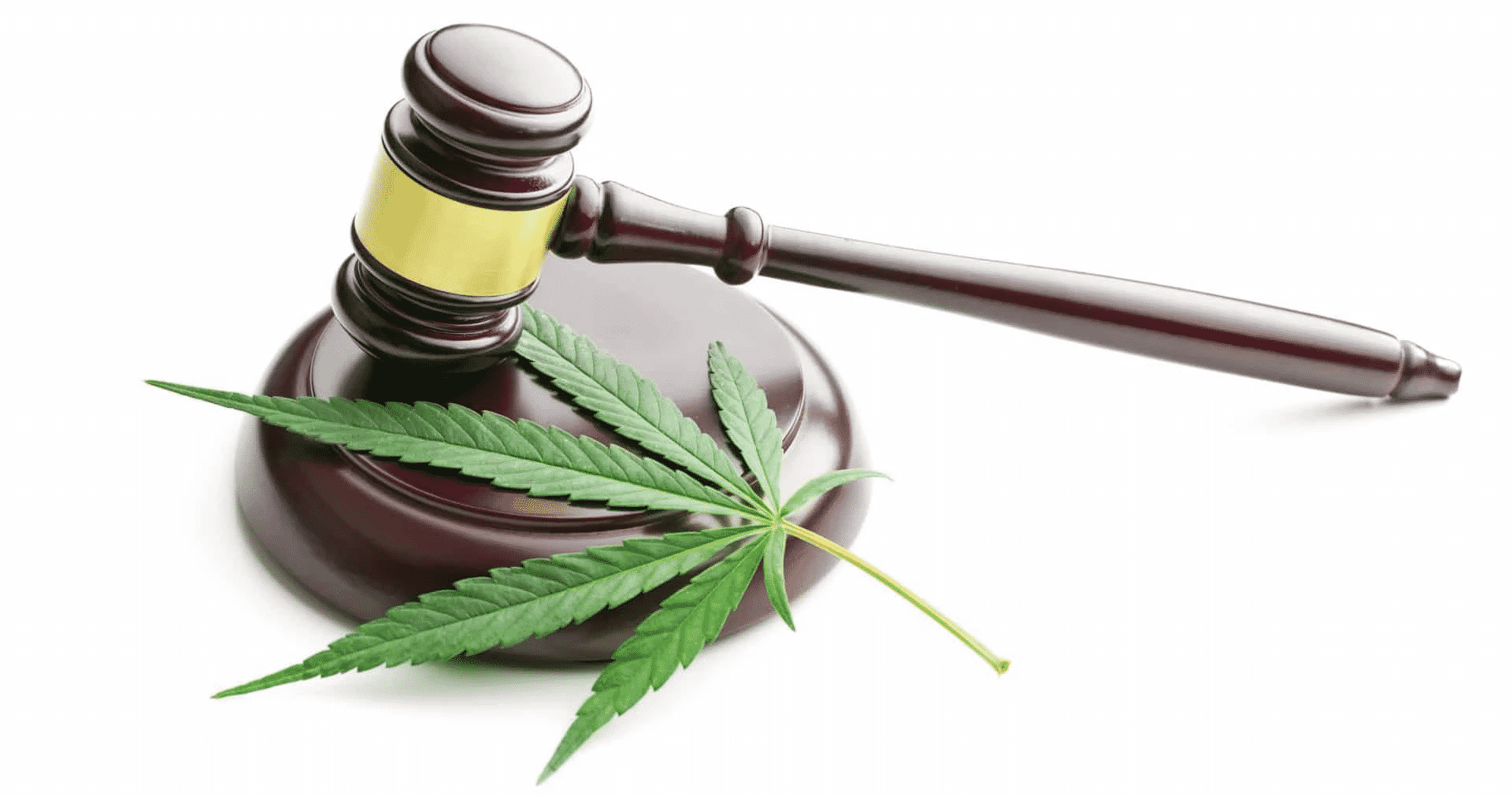 Legislation Act of Cannabis